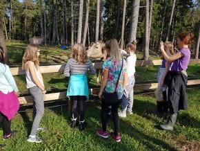 kaldhage-gard-eskelhem-djurpark-kalas-13