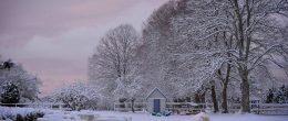 Vinter på gården